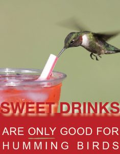Sweet drinks are only good for humming birds