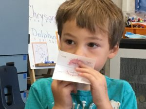 5 year old boy demonstrates how the quadrants on a piece of paper relate to the quadrants in his mouth